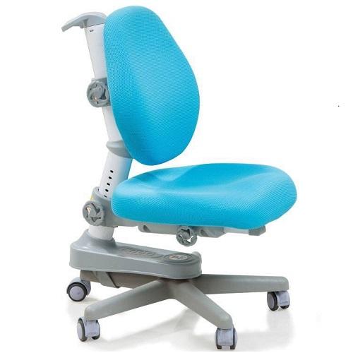 Ghế chống gù cao cấp DRY-501