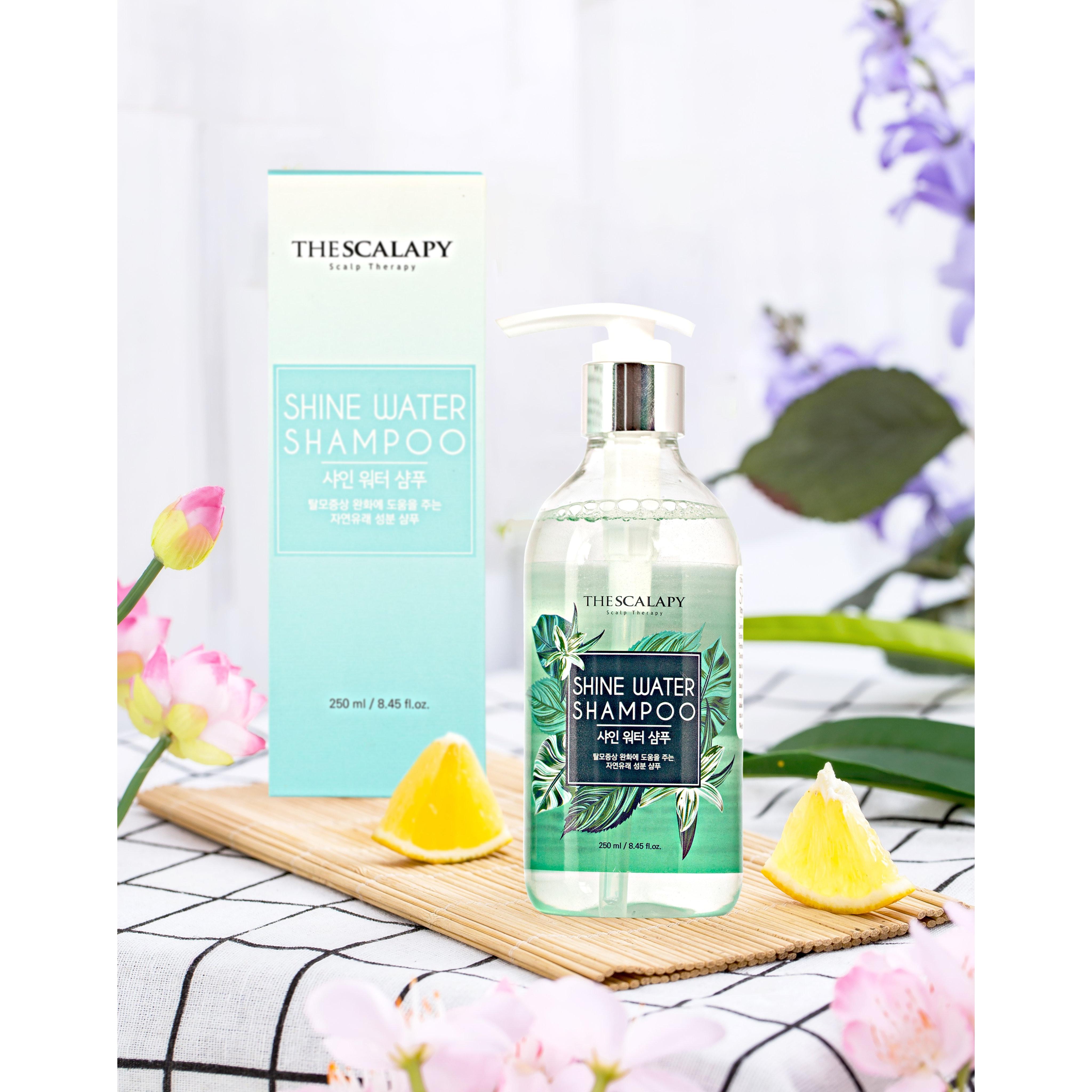 Dầu gội thảo dược Hàn Quốc Shine Water hỗ trợ điều trị rụng tóc, Kích thích mọc tóc, Cấp ẩm sâu cho tóc, Phù hợp người bị rụng tóc, hói đầu, tóc khô xơ gãy rụng, tóc mỏng, tóc yếu, tóc xoăn, Phụ nữ mang thai