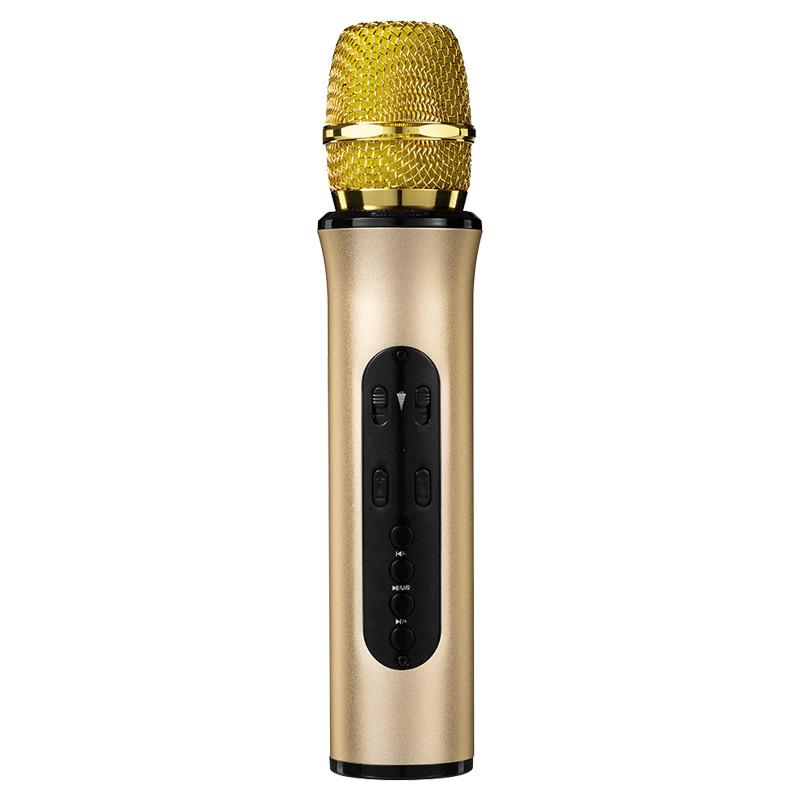 Micro Karaoke Bluetooth cao cấp PKCB Chính Hãng