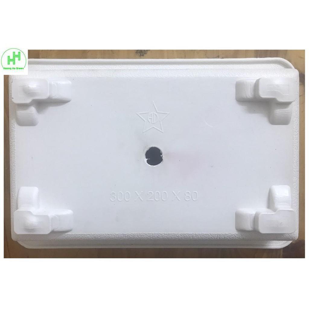 3 Chậu Nhựa Trồng Cây Mini AD 300x200x80 Hình Chữ Nhật Màu Trắng Siêu Đẹp - Made in VIETNAM