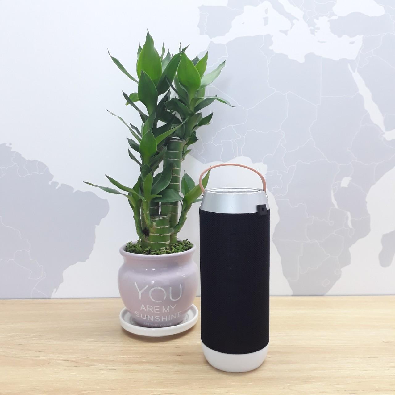 Loa Bluetooth J9