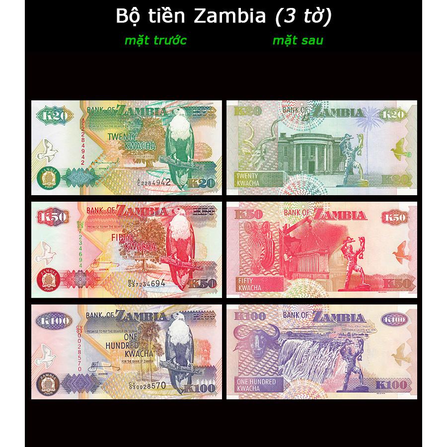 Bộ tiền Zambia 3 tờ 20 50 100 Kawacha, chất lượng mới 100%, kèm bao lì xì