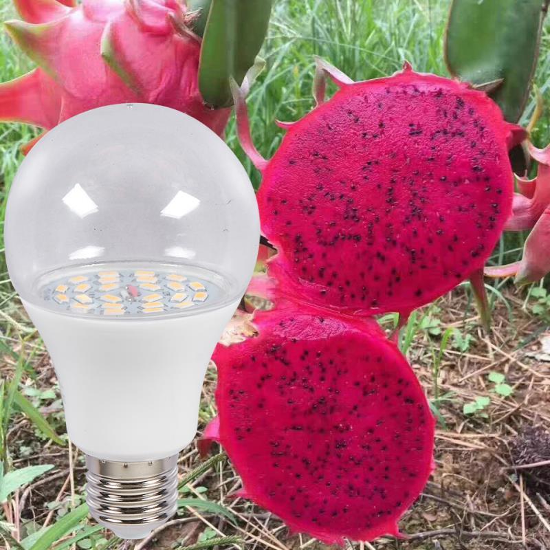 Đèn trồng cây Thanh Long DRG-15W, Đèn led xông Thanh Long, Đèn chiếu sáng Thanh Long