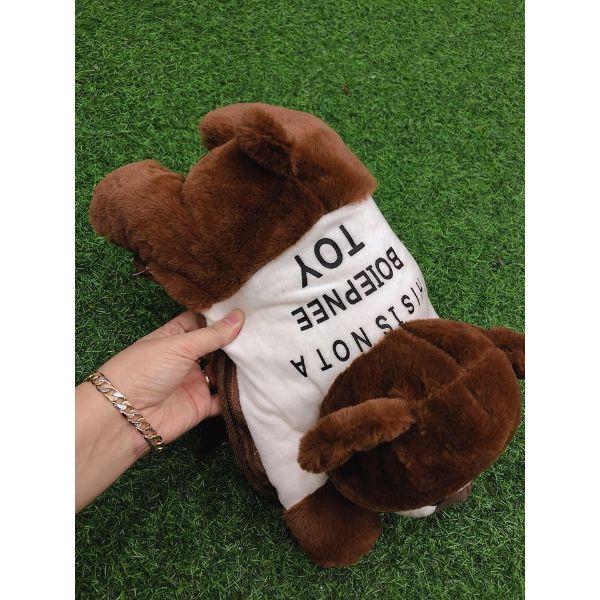 Túi Sưởi Ấm Lưng Họa Tiết Gấu nâu Đa Năng (1 Sản Phẩm)- Dùng Điện  - Màu Nâu - Mẫu TSC0269