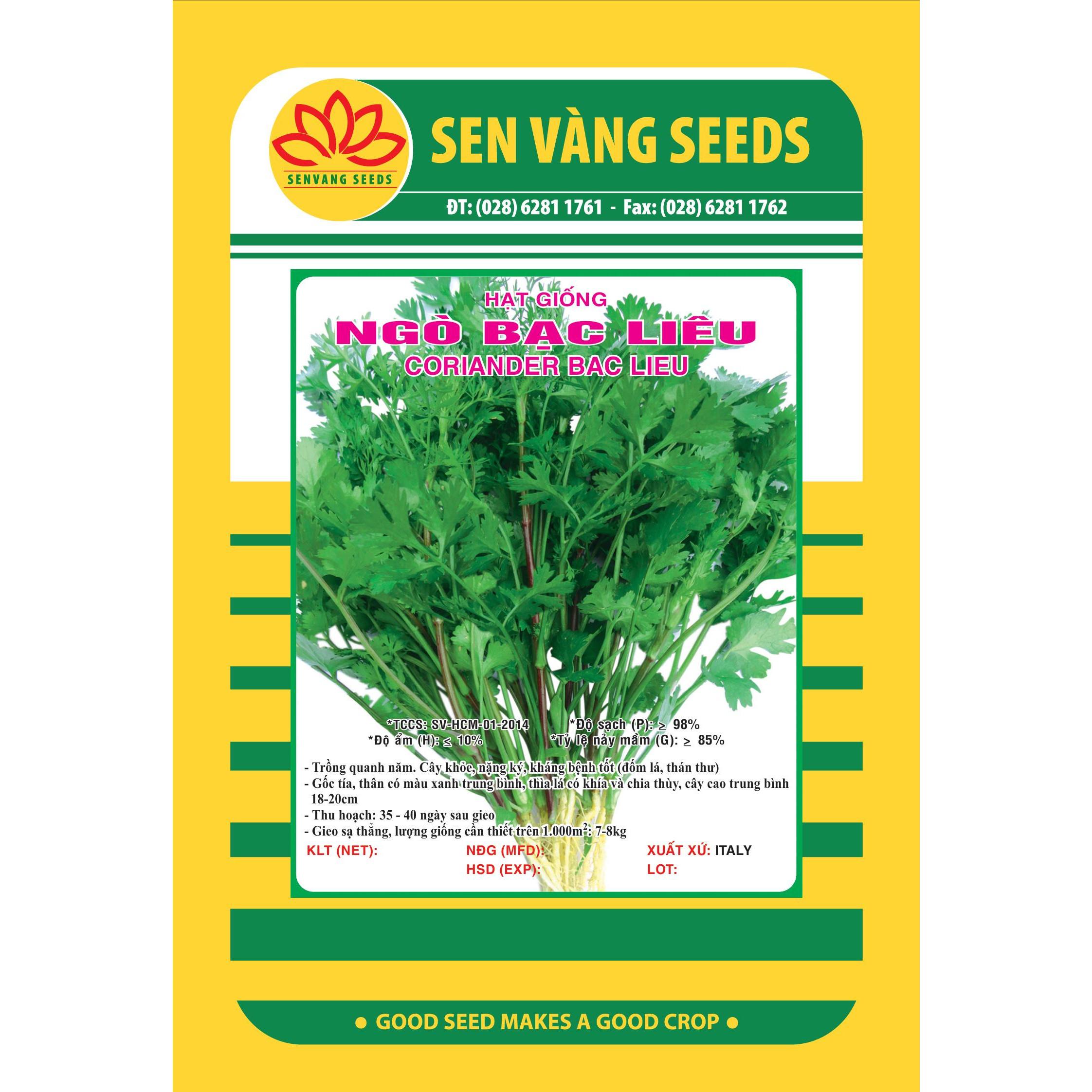 02 gói Hạt giống ngò Bạc Liêu -  rau mùi - ngò hạt lớn gói 20g VTS43