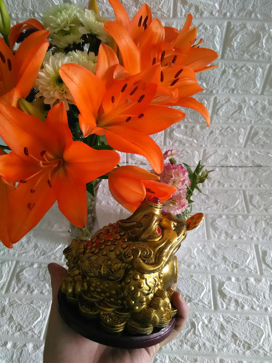 Tượng Cóc ba chân ngậm tiền vàng chiêu giữ tài lộc màu đồng TTD16