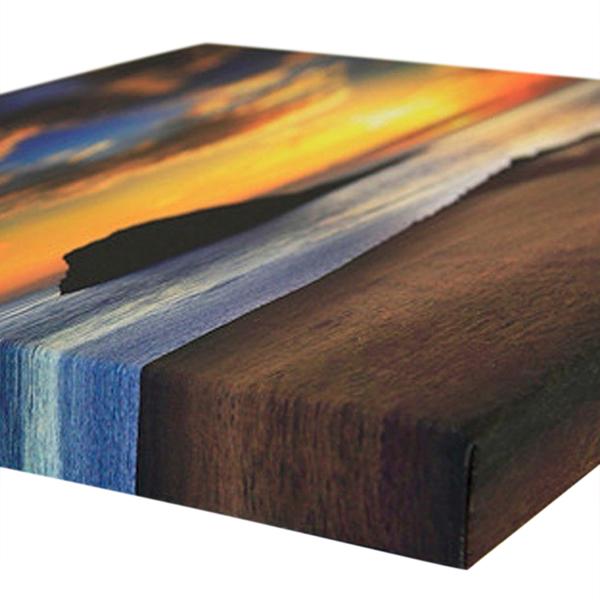 Tranh Canvas (50 x 100 cm) - Trang Trí Phòng Khách, Phòng Ngủ, Phòng Làm Việc Tặng Kèm Đinh Treo Tranh Chuyên Dụng - Khung Hình Phạm Gia PG17