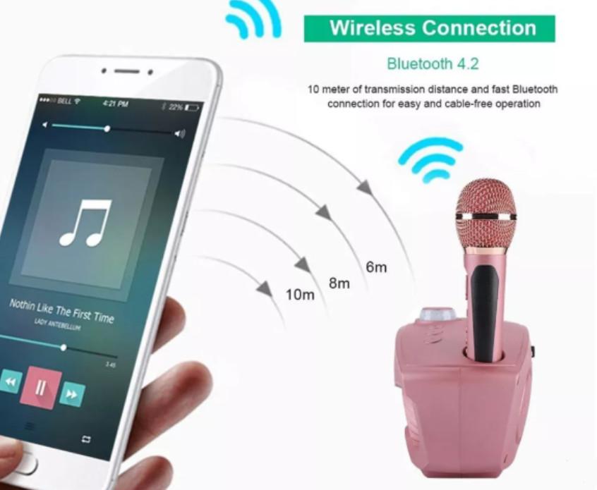 Mic Hát Karaoke 2 Loa Bluetooth SD-306