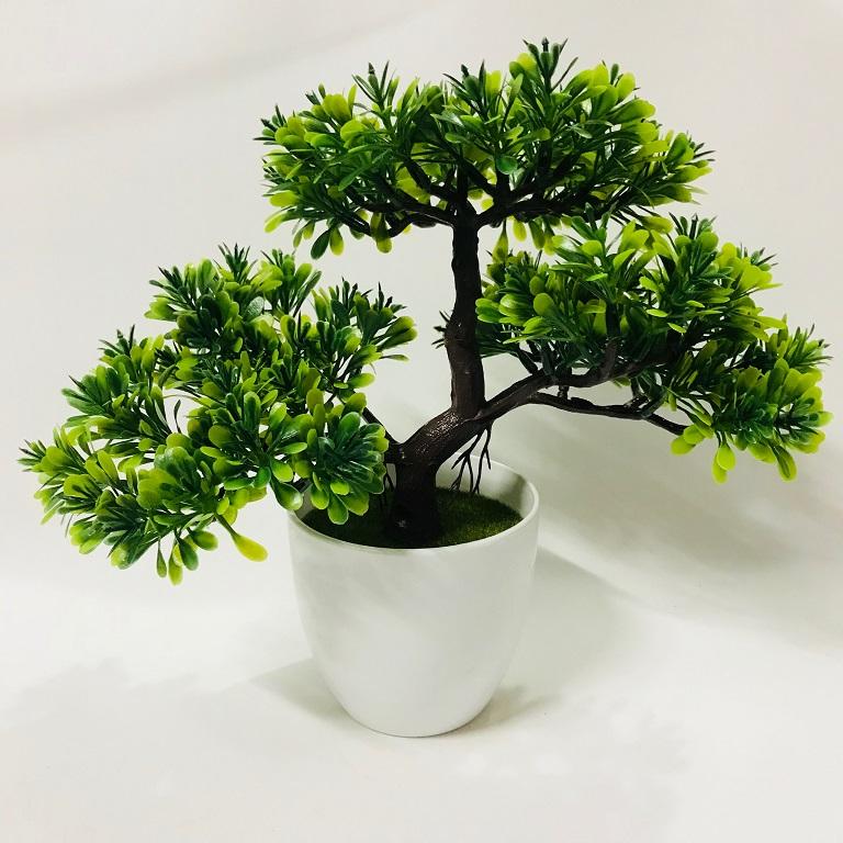 Chậu Bonsai nhựa 3 nhánh dáng Xòe các màu