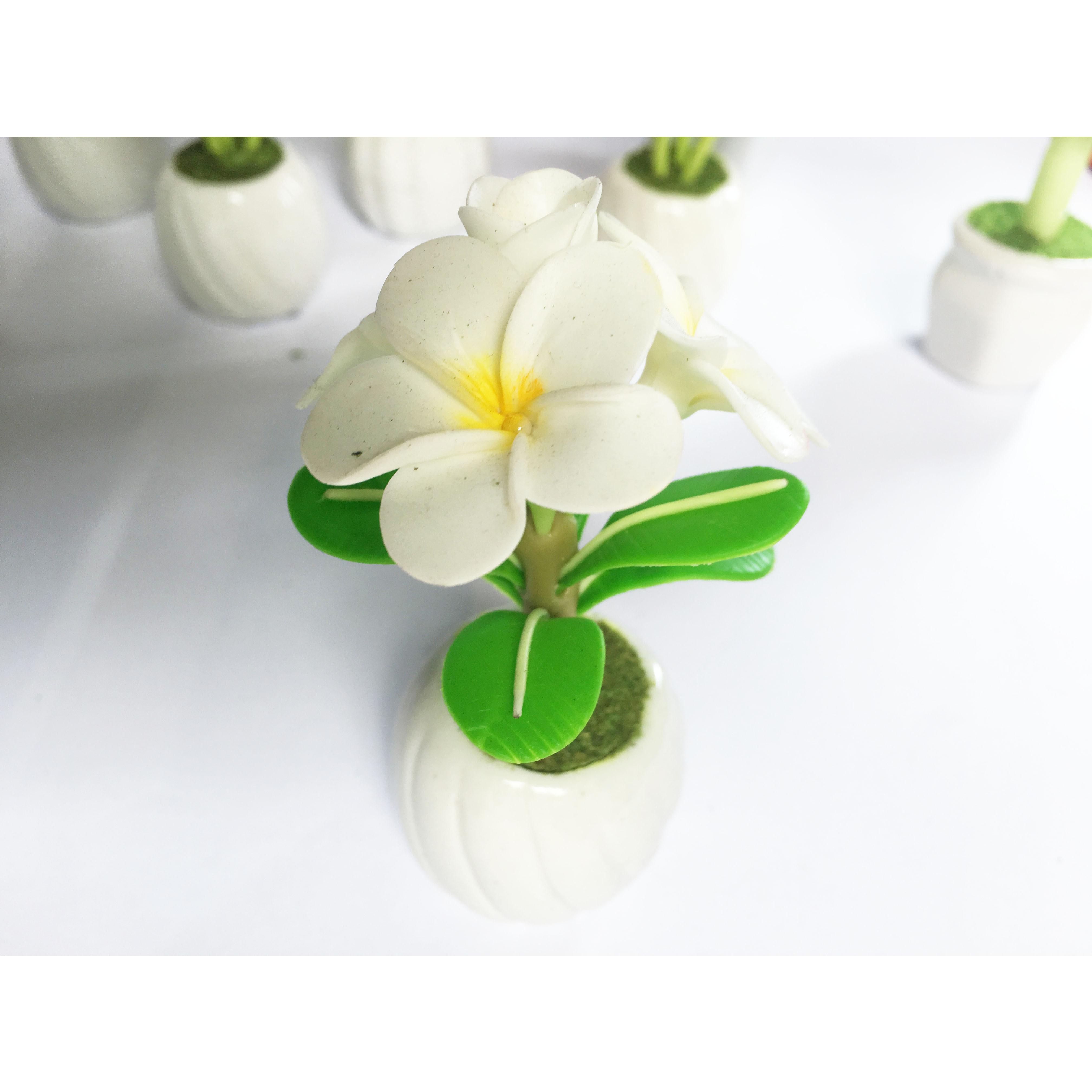 Chậu hoa đất sét mini - Hoa sứ