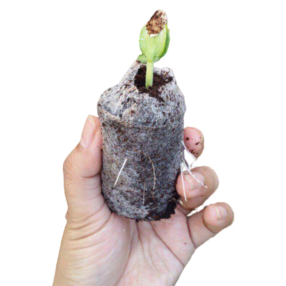Hộp 200 Viên nén ươm hạt  - Viên nén xơ dừa BATRIVINA