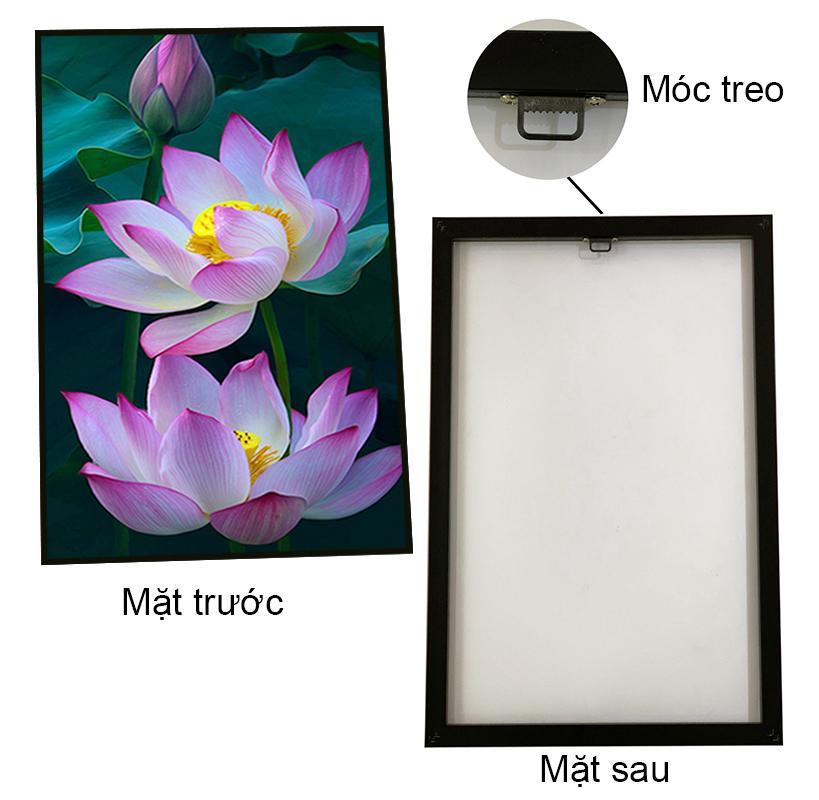 Tranh canvas treo tuòng – Bộ 3 Tranh hoa sen CC90 - Vải canvas cán PiMa - In UV - Viền Composite