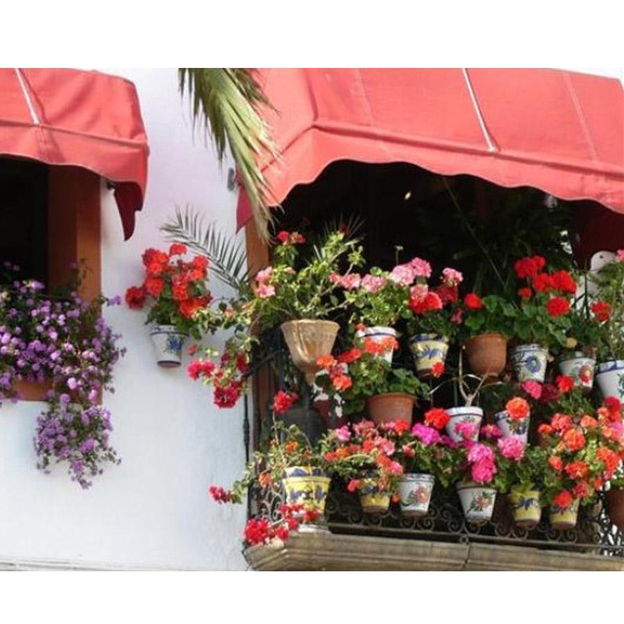 Bộ 3 chậu cây trồng thông minh màu nâu 24 x 17 cm - Hàng Nội Địa Nhật