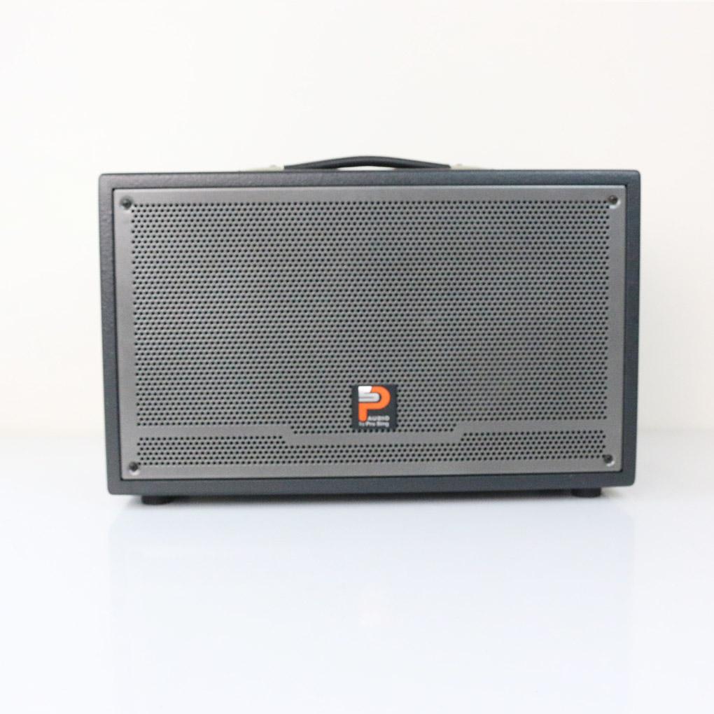 Loa kéo Prosing W-Silver E – Loa karaoke thùng gỗ cao cấp - Hàng chính hãng