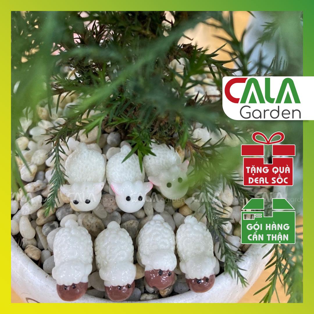 Chú Cừu Nhỏ Dolly- Phụ kiện trang trí cho cây xanh để bàn làm việc, mô hình trang trí cho bể cá, tiểu cảnh