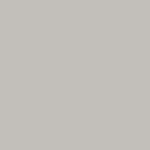 Phông giấy mỹ chụp ảnh studio màu xám mã: 23