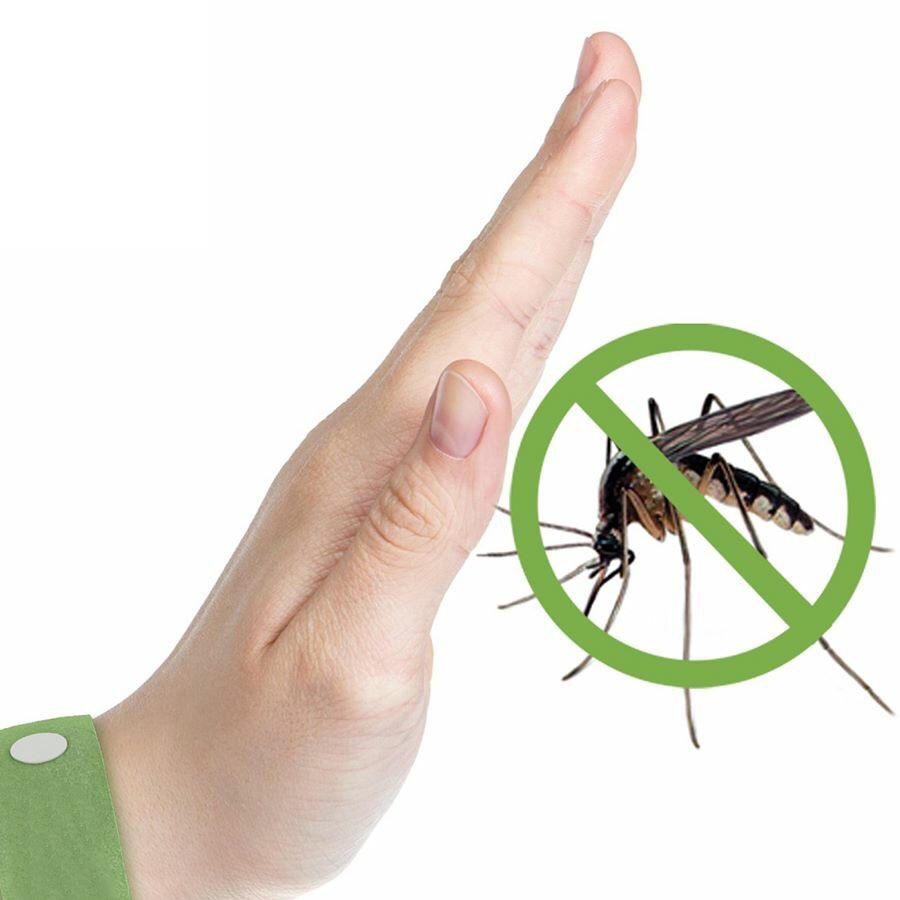 Conbo Đèn Xông Tinh Dầu + Tinh Dầu Tràm Đất Việt 10ml (Giải pháp phòng chống muỗi trong mùa mưa)