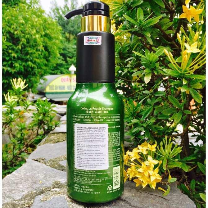 Dầu gội Sophia Platium Collagen Repair Shampoo phục hồi tóc hư tổn Hàn Quốc 500ml tặng kèm móc khoá