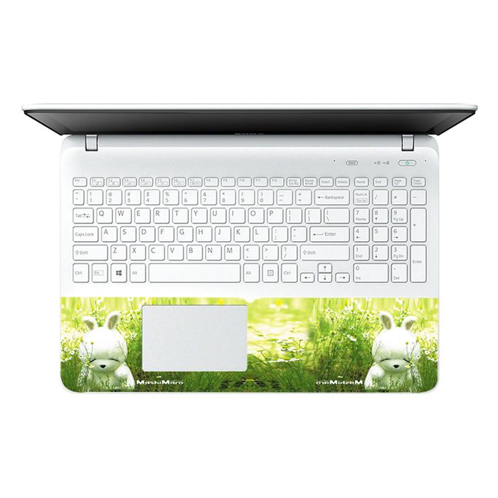Mẫu Dán Decal Laptop Logo LTNT-253
