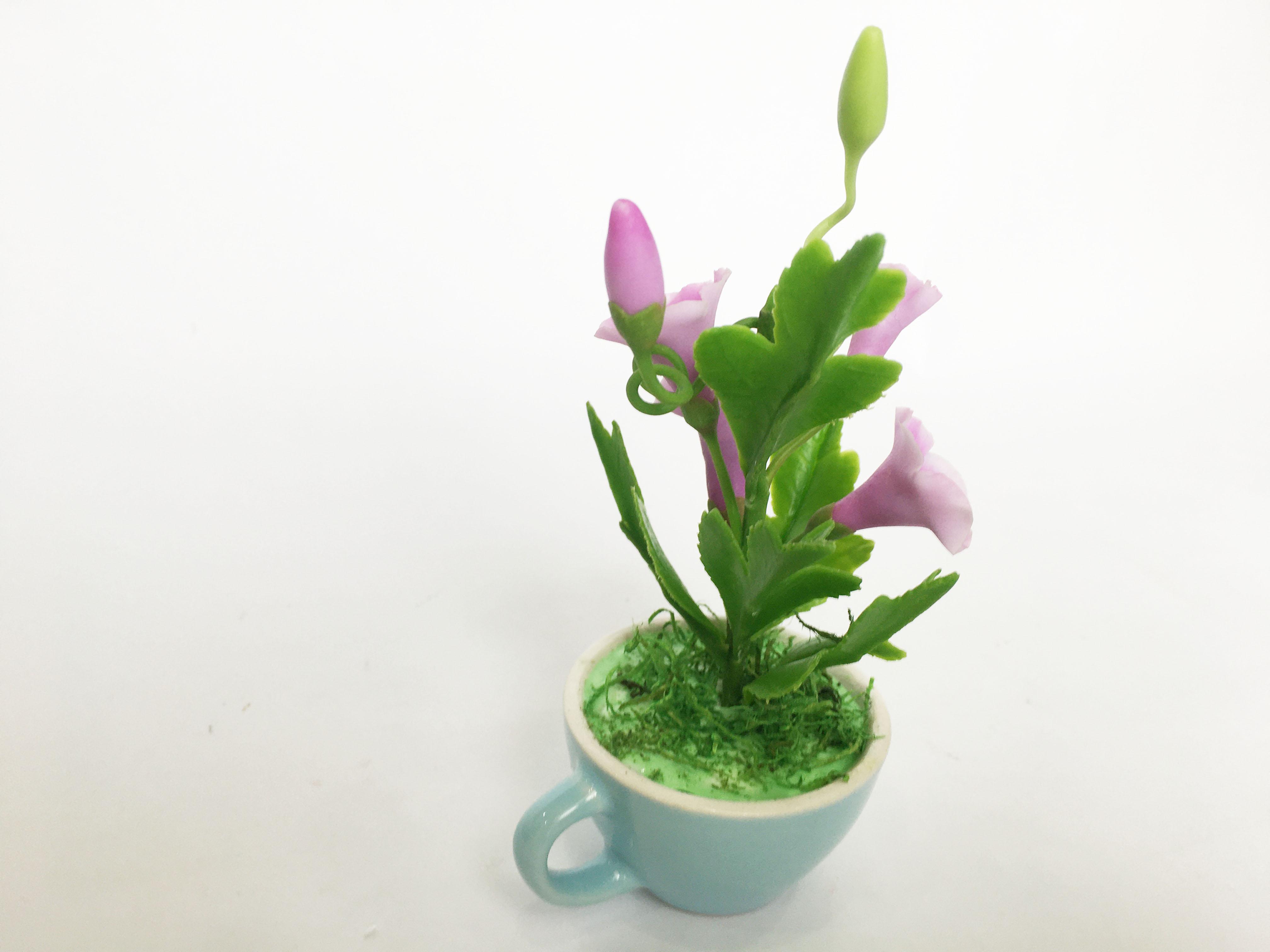 Chậu hoa đất sét mini- Bụi bìm bịp/bìm bìm trong cốc - Quà tặng trang trí handmade (12x8x8cm)