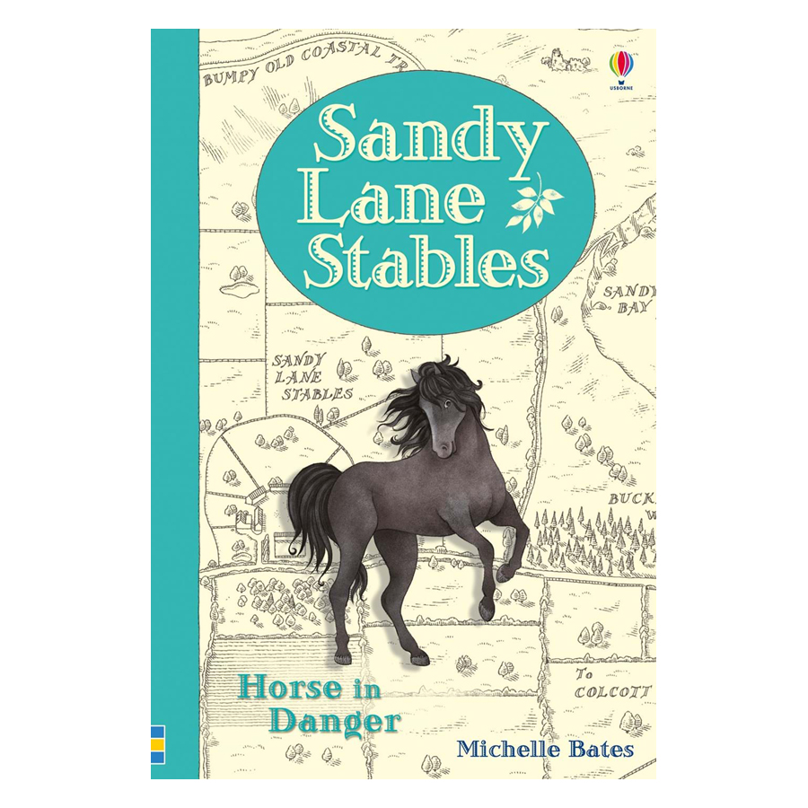 Usborne Sandy Lane Stables Horse in Danger