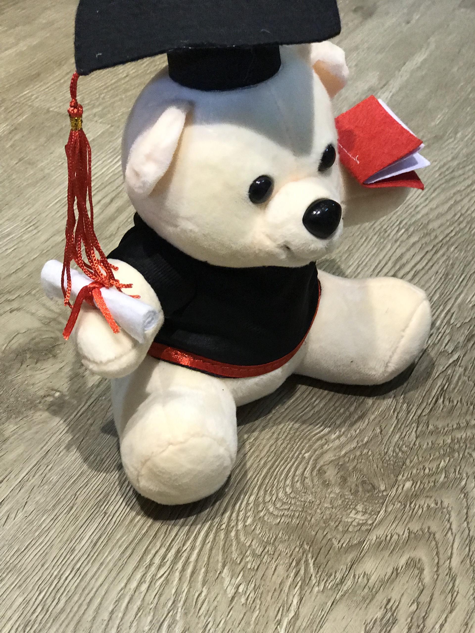 Gấu bông tốt nghiệp màu kem lông mịn size 30cm