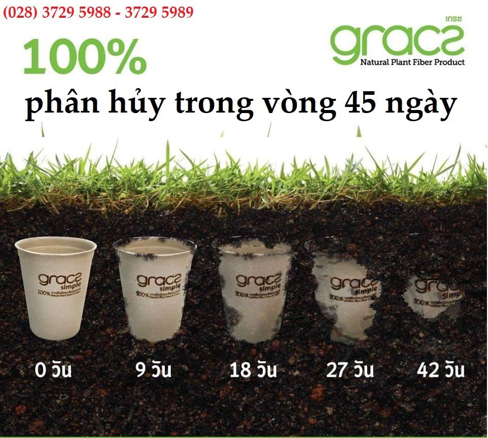 Combo 50 cái Hộp kèm nắp bã mía Thái Lan 350ml - thương hiệu Gracz