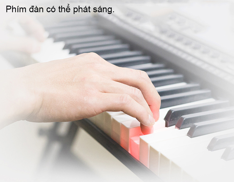 Đàn Organ điện tử 61 Phím phát sáng - Bán chuyên cho người học nhạc