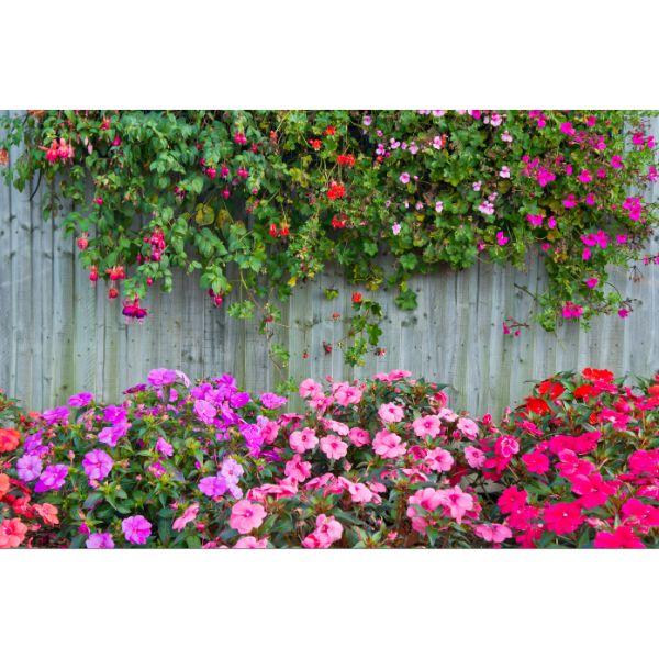 Giấy dán tường - Hoa H316 - Vải lụa - 1.2m x 1.8m