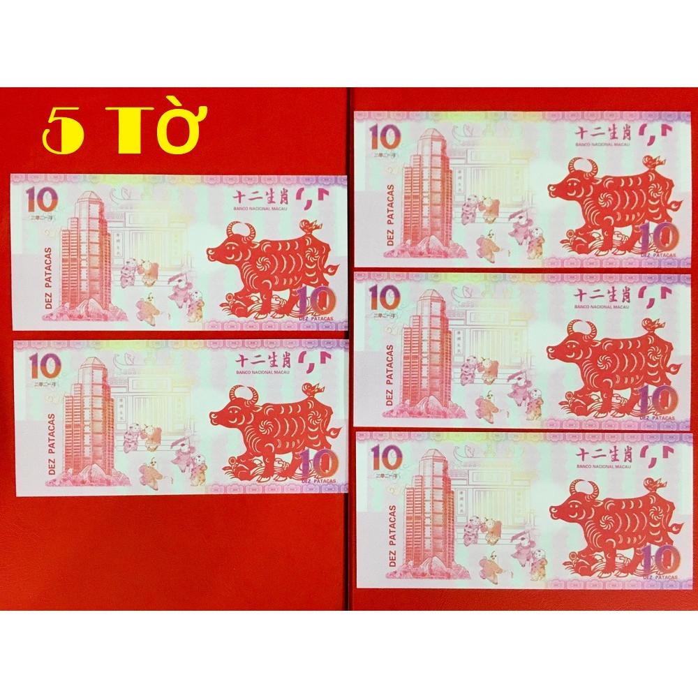 05 Tờ tiền 10 Macao lưu niệm hình con trâu độc đáo lì xì Tết - tặng kèm bào lì xì - The Merrick Mint