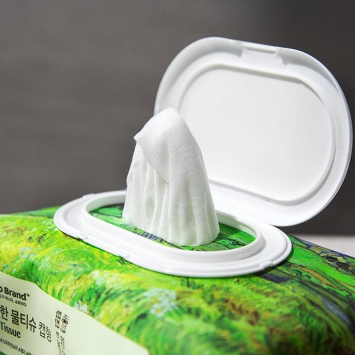 Khăn Ướt Có Nắp Nhựa 100 Tờ No Brand