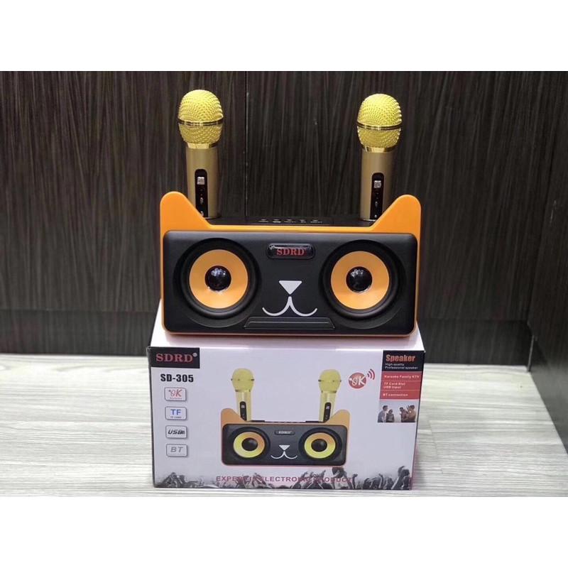 Loa Karaoke Bluetooth SD-305 Kèm 2 Micro - Hàng Nhập Khẩu