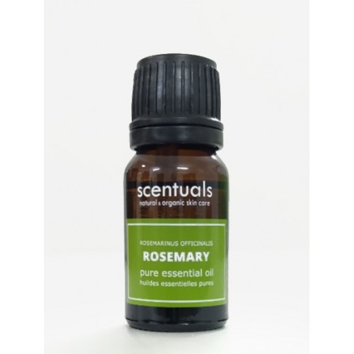 Tinh dầu hương thảo - Pure essential oil 10 ml rosmarinus officinalis - ROSEMARY