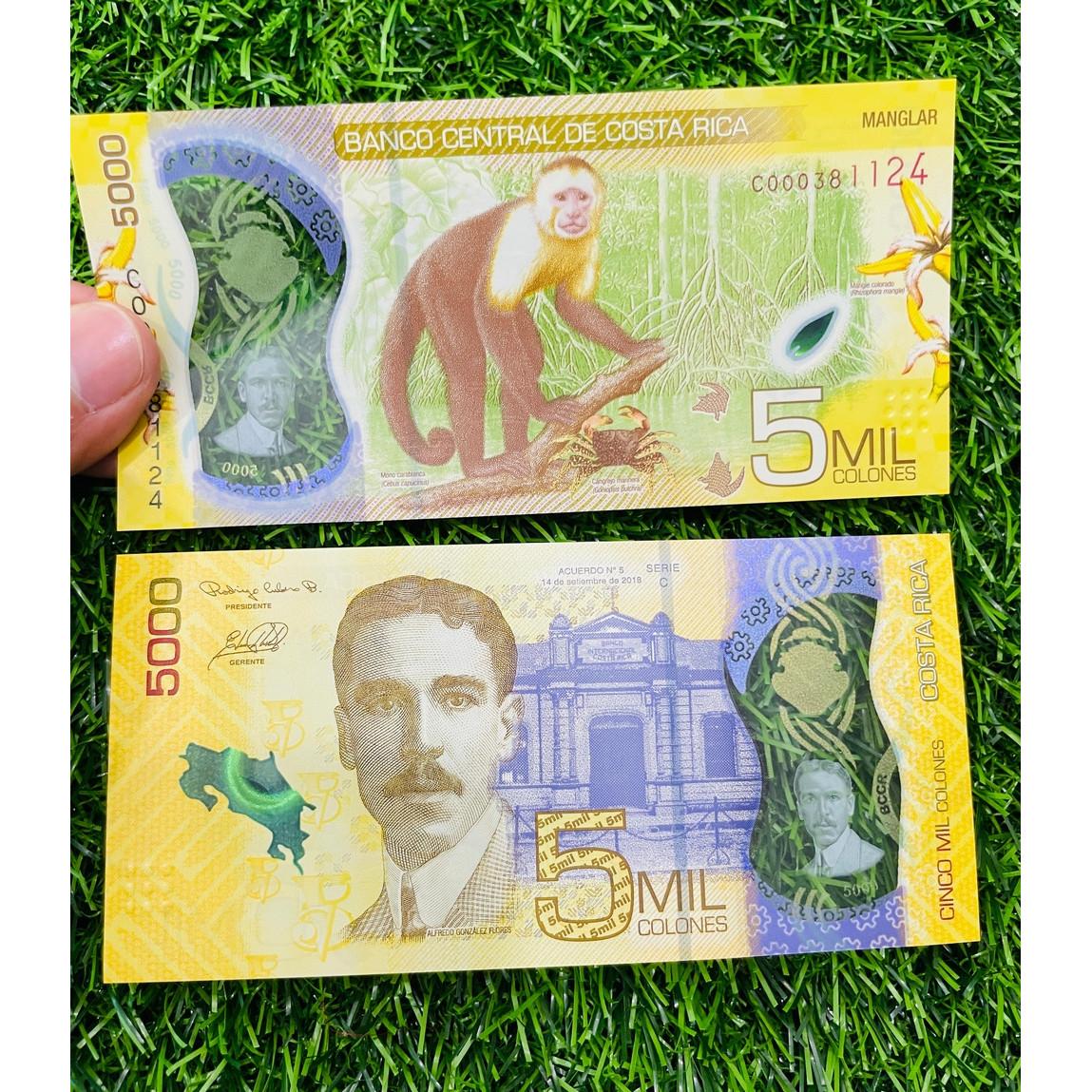 Tiền Costa Rica 5000 Colones hình con khỉ [SƯU TẦM TIỀN CHÂU MỸ] bằng polyme, mới 100% UNC, tặng túi nilon bảo quản
