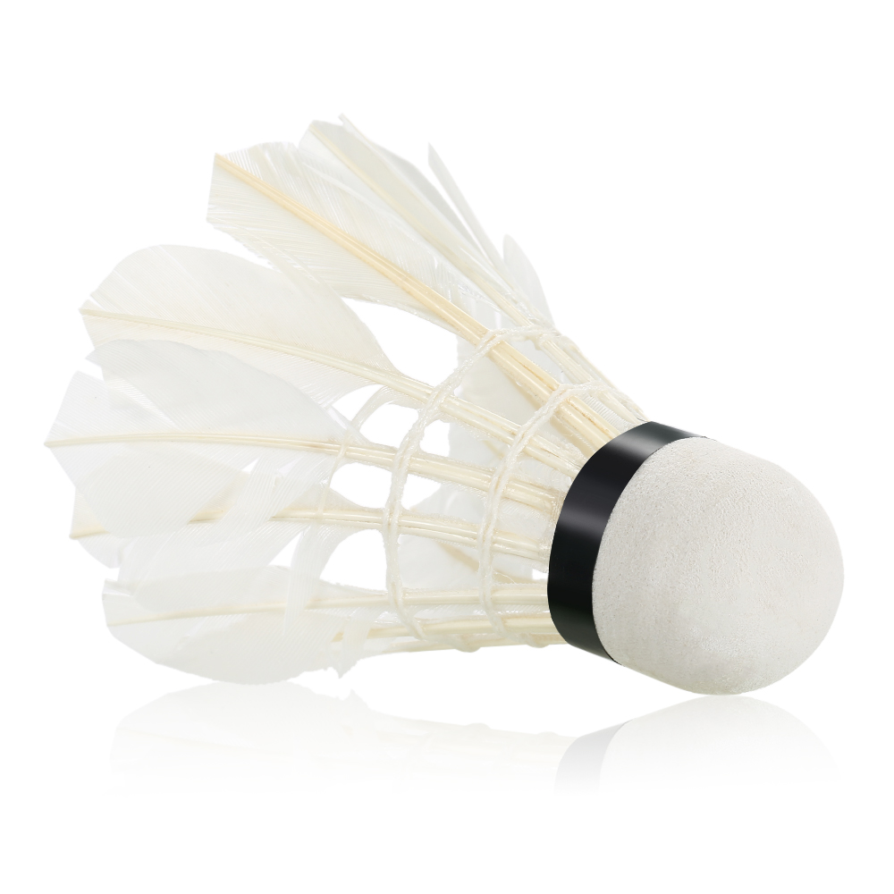 Hộp 12 quả cầu lông AOLIKES A-S30012C