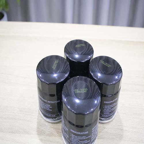 Lọc tách dầu chân không PN 06100 cho bơm hút chân không WONVAC từ WOVP 0040F - WOVP 120F- Hàng Nhập khẩu