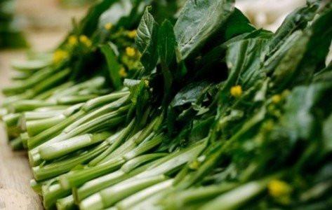 Hạt giống rau cải ngồng 3