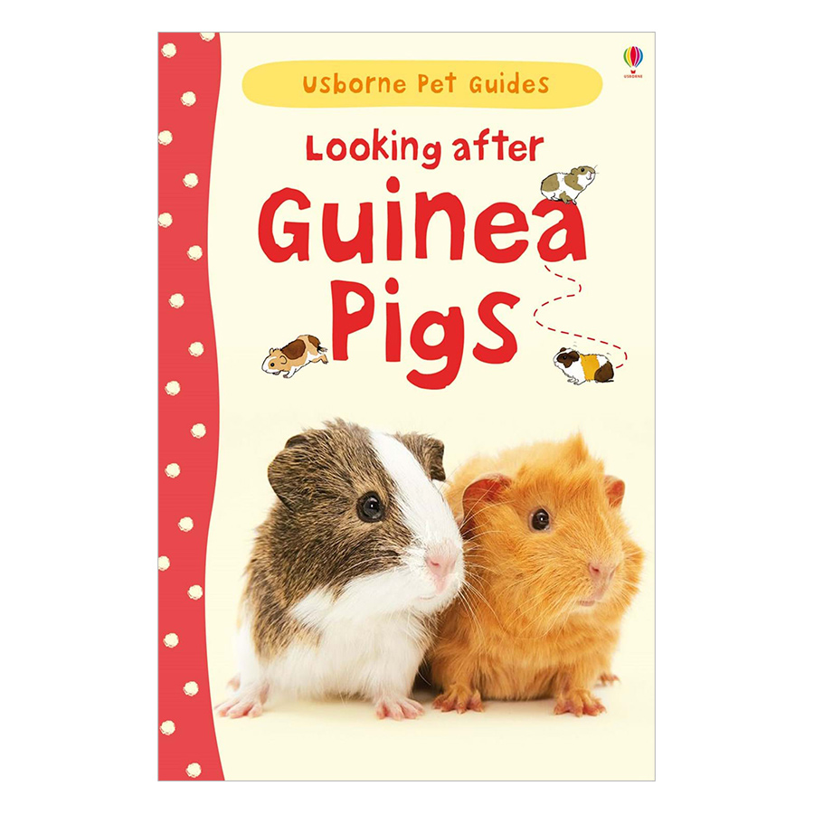 Usborne Pet Guides: Looking after Guinea Pigs