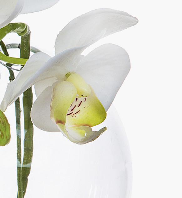 Bình hoa lan trắng nhân tạo SIA, bình thủy tinh