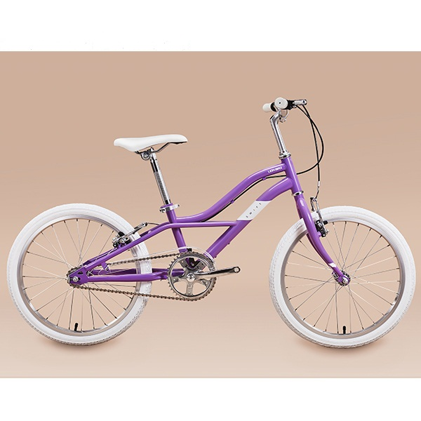 Xe đạp trẻ em Lion Bird 20 inh - Tím violet
