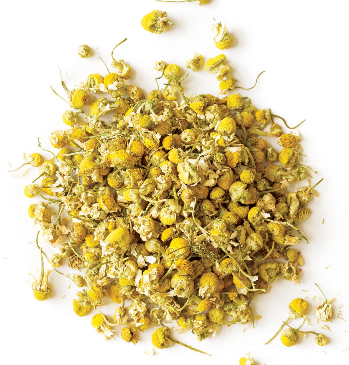 Trà hoa cúc mẫu thảo (trà cúc La Mã) hữu cơ nguyên bông Dary Natury