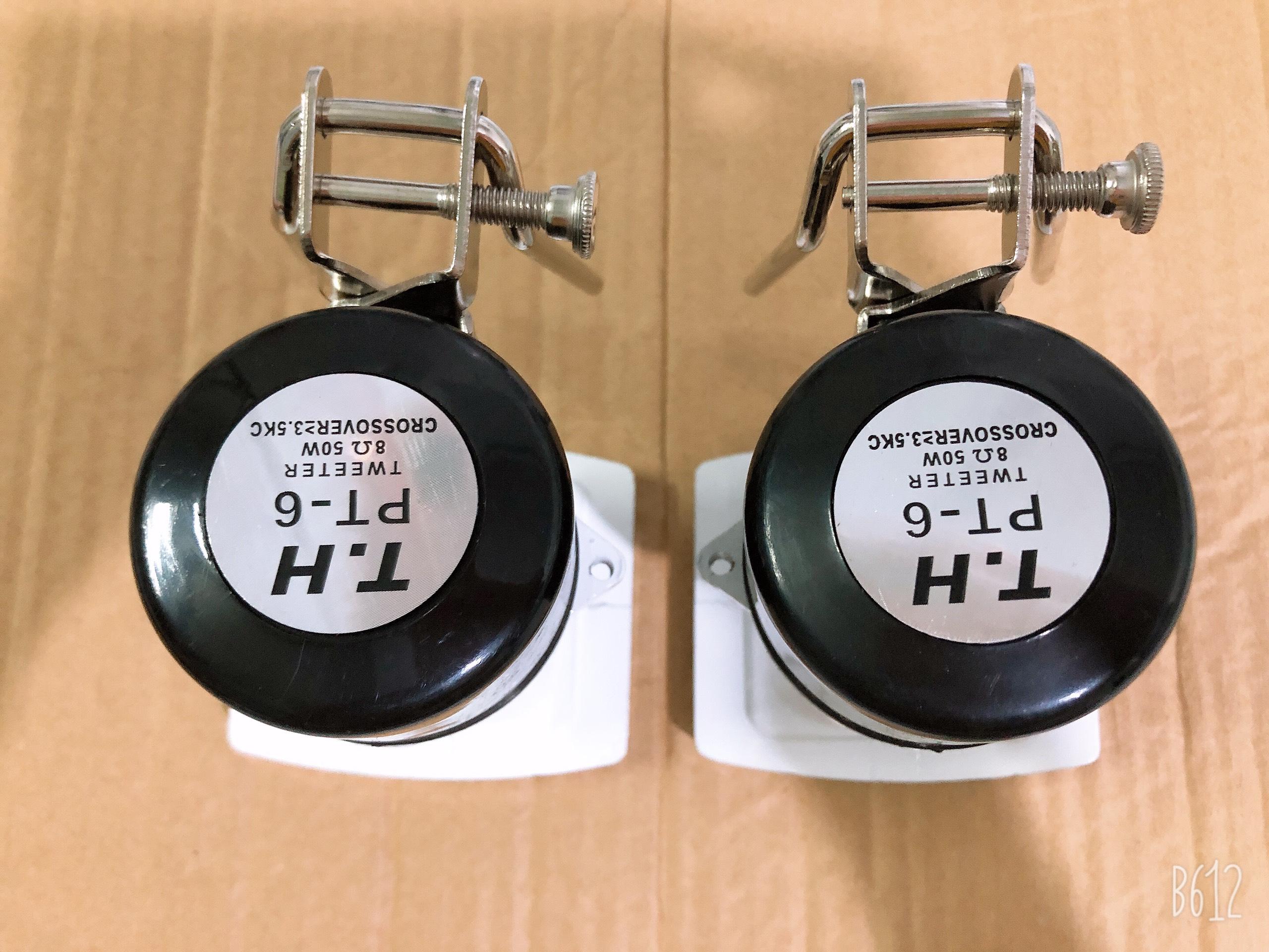 BỘ 2 loa siêu treble PT-6 họng đúc