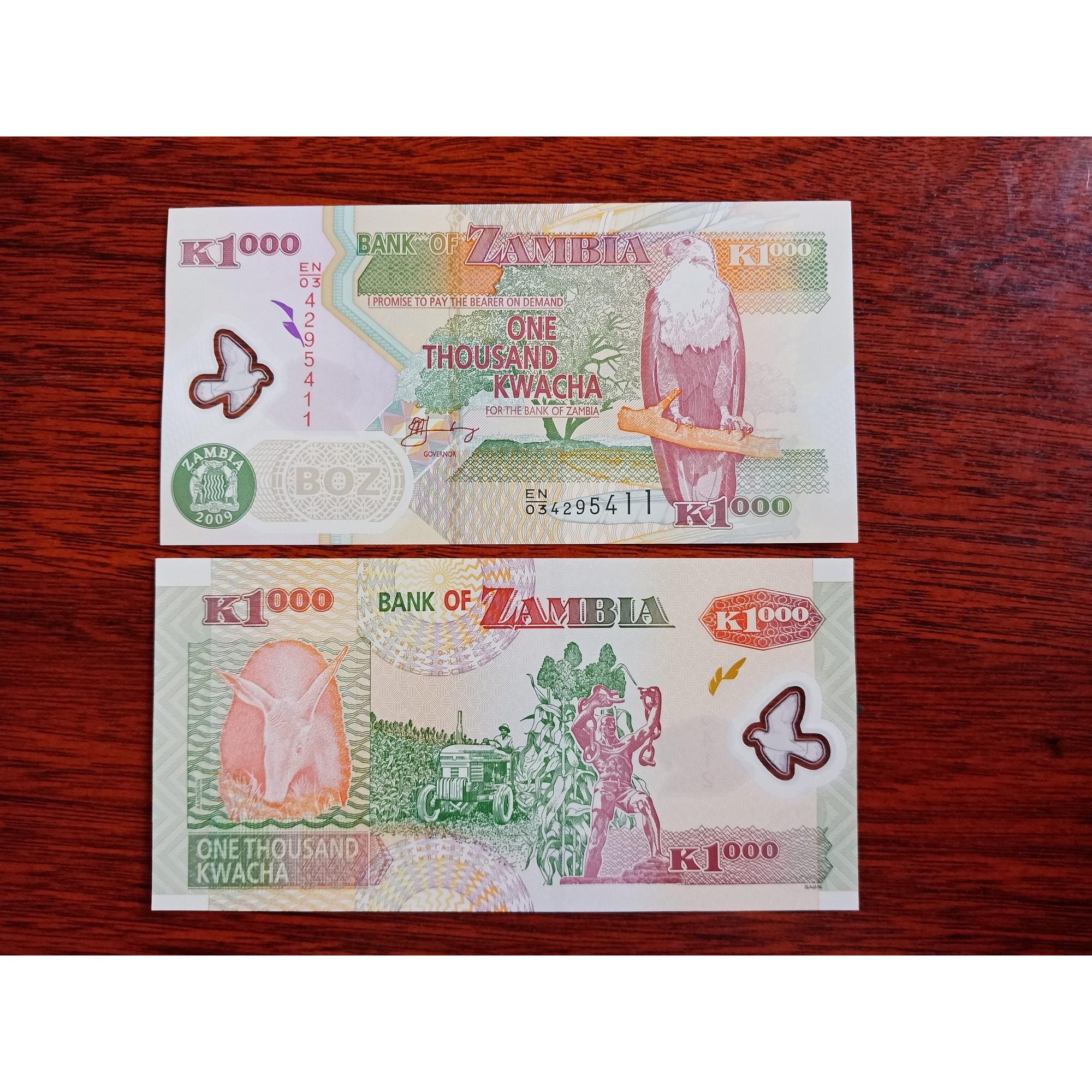 Tờ tiền Zambia 1000 Kwacha bằng polyme xưa hình chú chim tuyệt đẹp, mới 100% - kèm bao lì xì