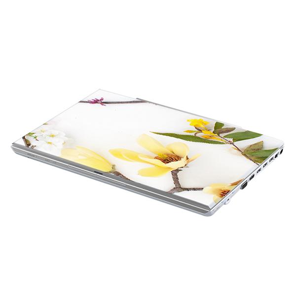 Mẫu Dán Decal Hoa Văn Trang Trí Laptop LTHV-215