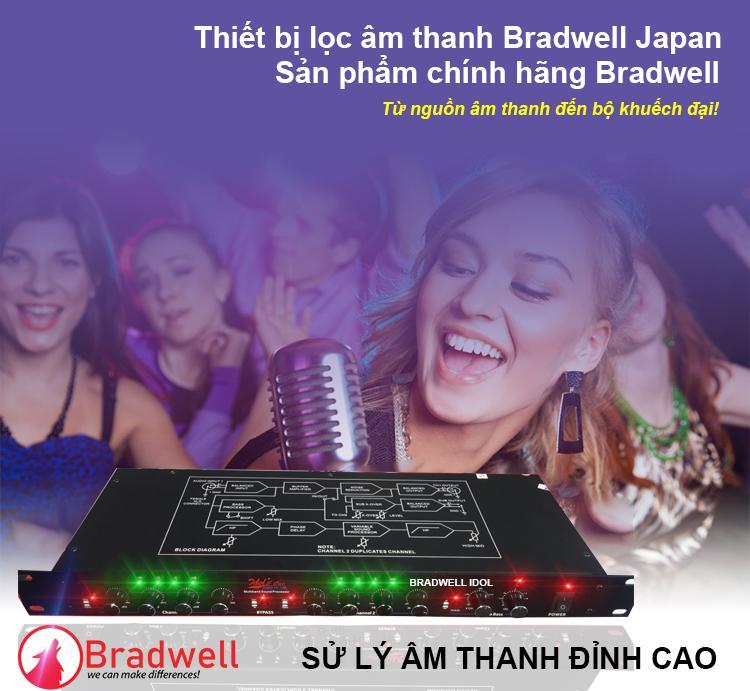 Lọc âm karaoke Bradwell Hàng Chính Hãng
