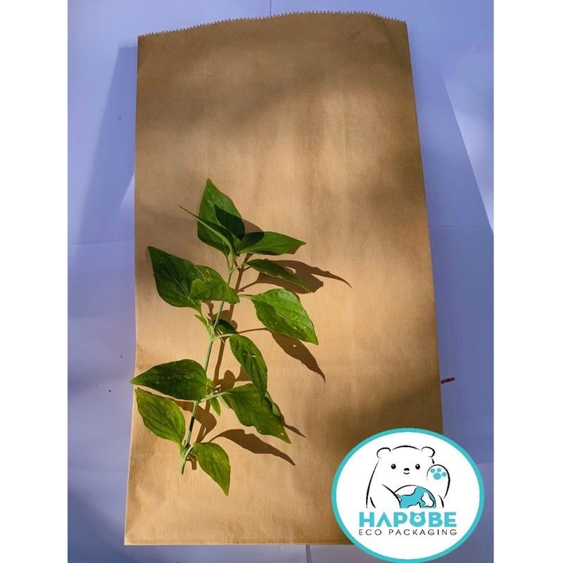 100 túi giấy kraft nhật dùng đựng thức ăn nhanh, đựng hàng K2012 không quai 19x10x33cm