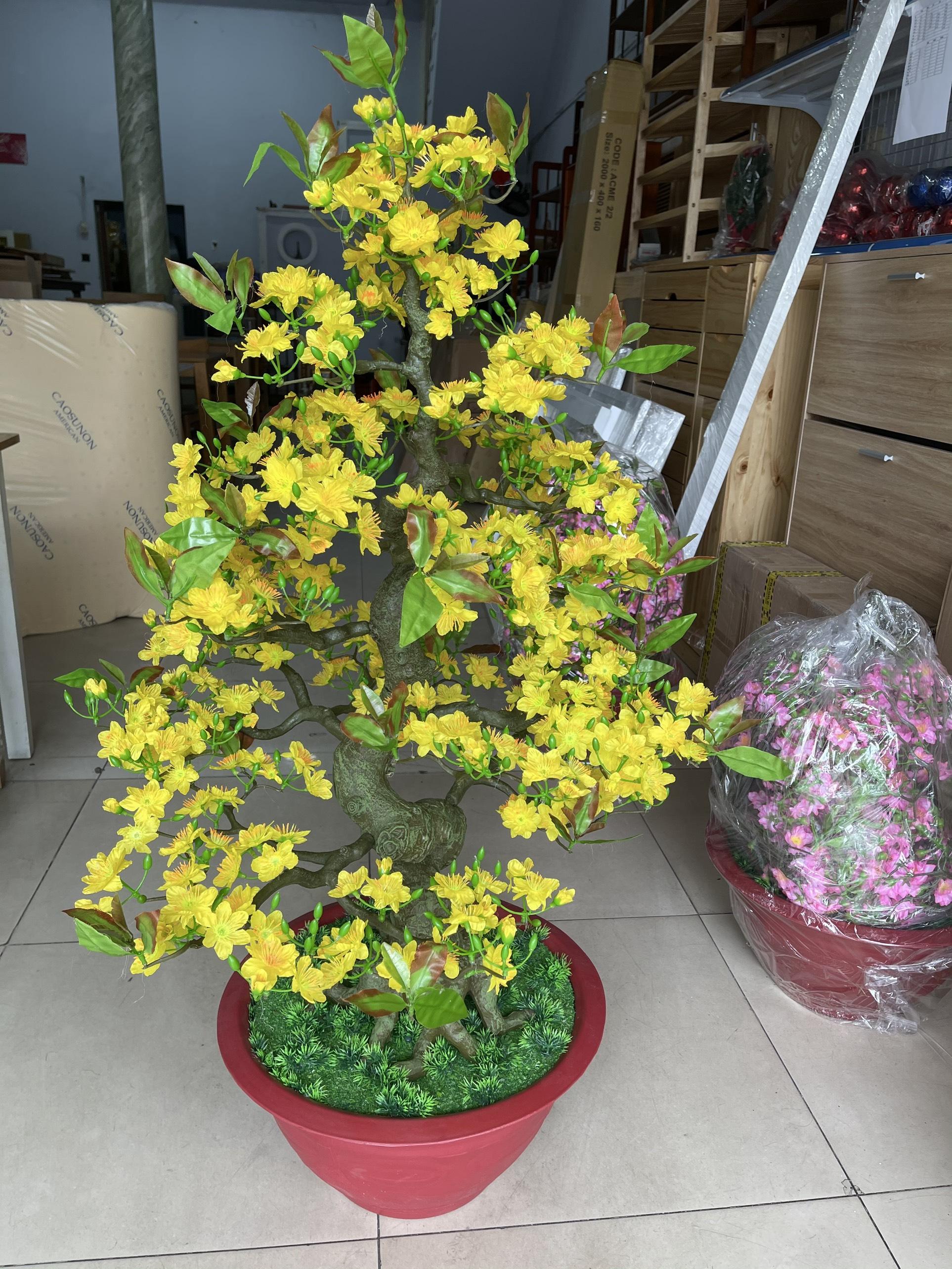 Cây Hoa Mai Bonsai Giả Cao 1m25 Chậu Hoa Mai Trang Trí Tết