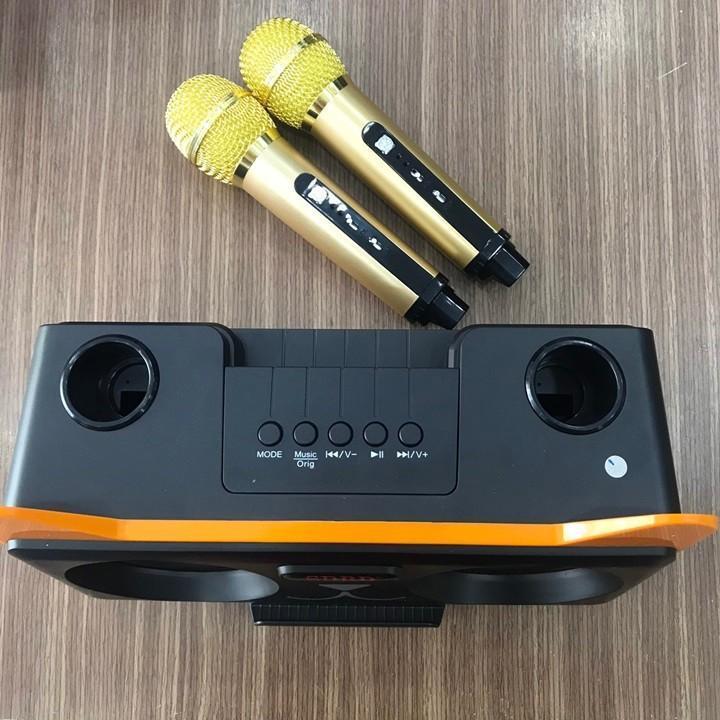 Loa hát karaoke bluetooth SD - 305 tặng kèm 2 mic ko dây