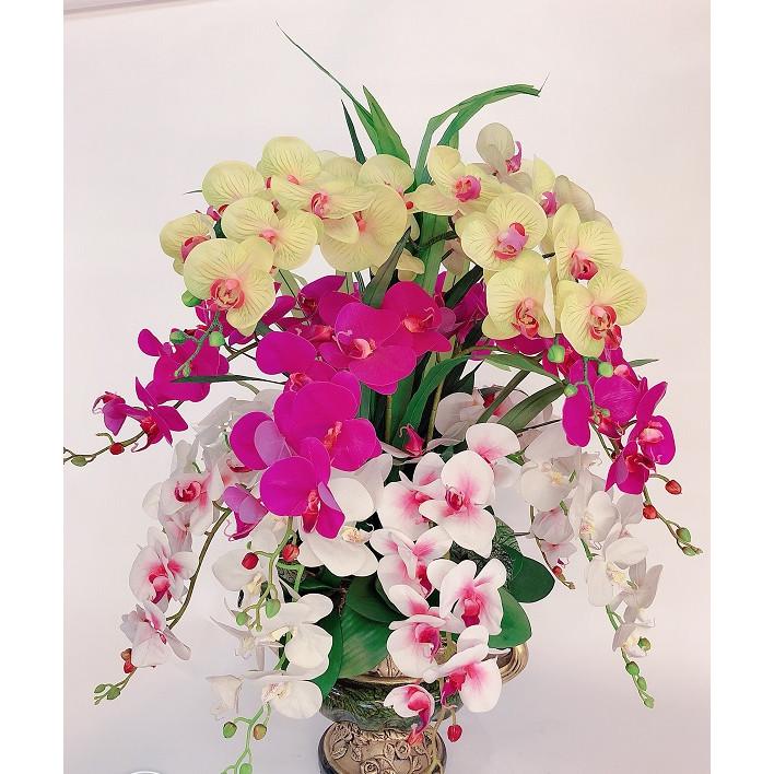 Bình hoa lan hồ điệp cao su cao cấp trang trí không gian phòng khách hội trường sân khấu phong cách trang nhã