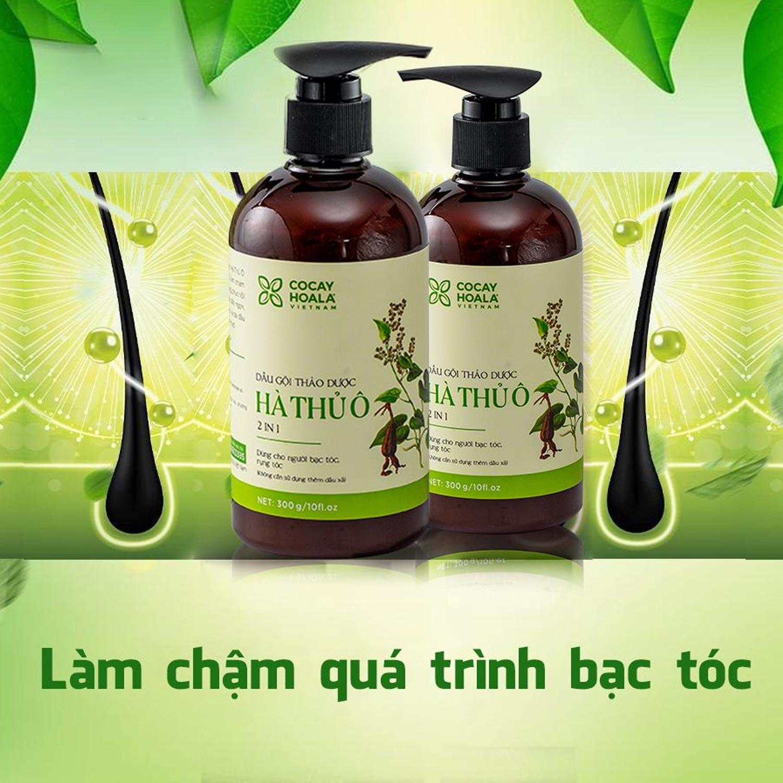 Dầu gội thảo dược Hà Thủ Ô Cỏ Cây Hoa Lá chiết xuất 100% từ thiên nhiên giúp làm chậm quá trình bạc tóc, phục hồi tóc hư tổn COCAYHOALA 300g